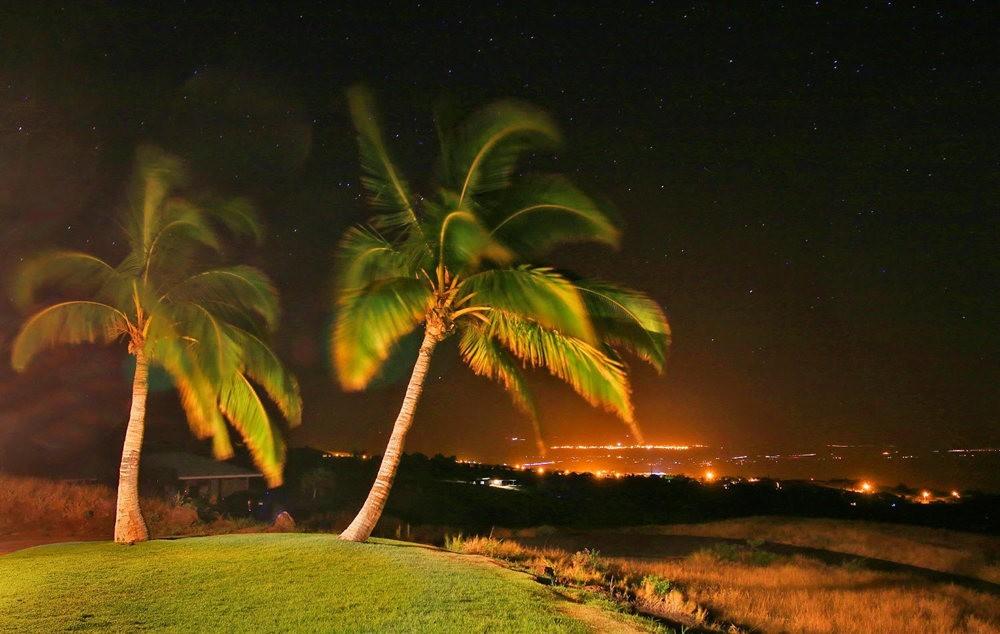 在夏威夷大岛度假---2_图1-6