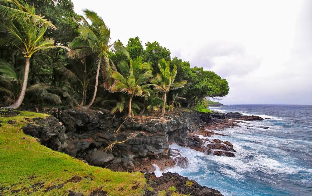 在夏威夷大岛度假---2_图1-27