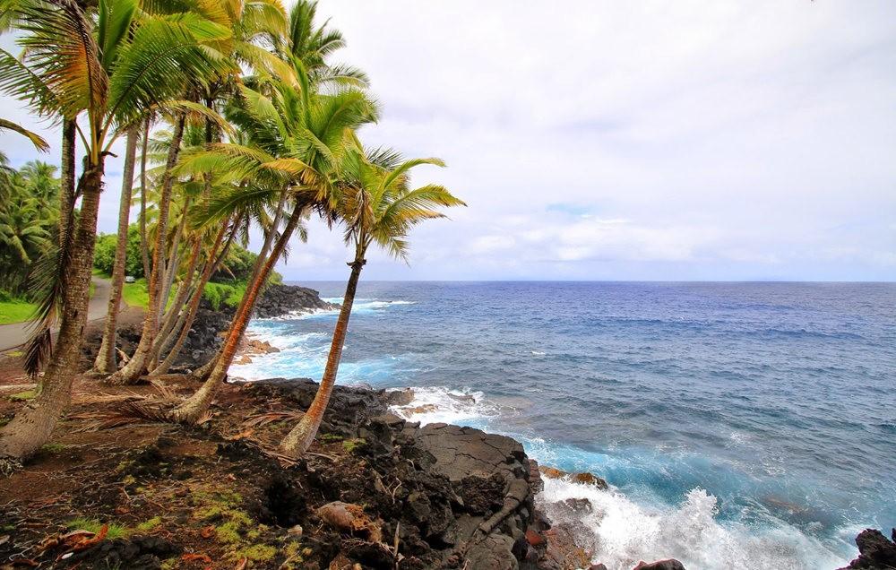 在夏威夷大岛度假---2_图1-28