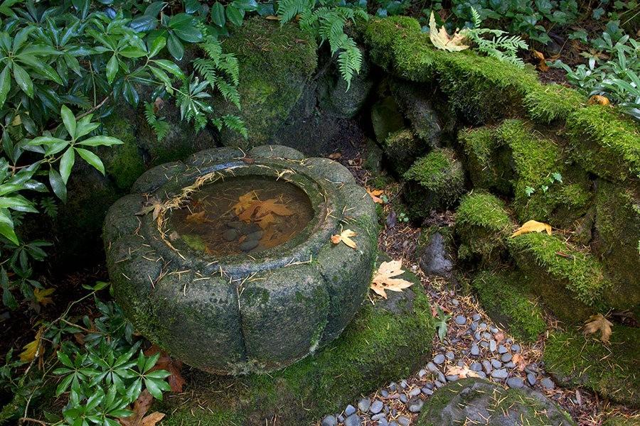 秋天的波特兰日本花园_图1-4