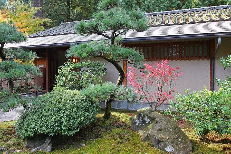 秋天的波特兰日本花园_图1-6