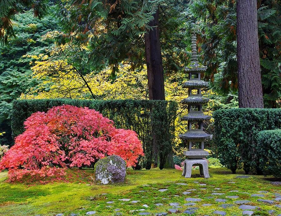 秋天的波特兰日本花园_图1-7