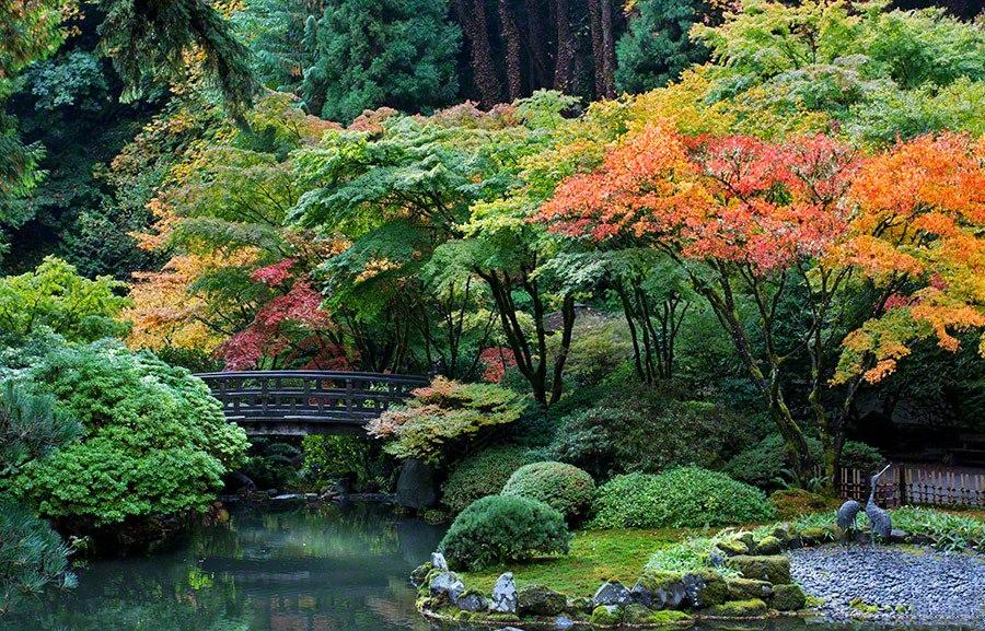 秋天的波特兰日本花园_图1-9