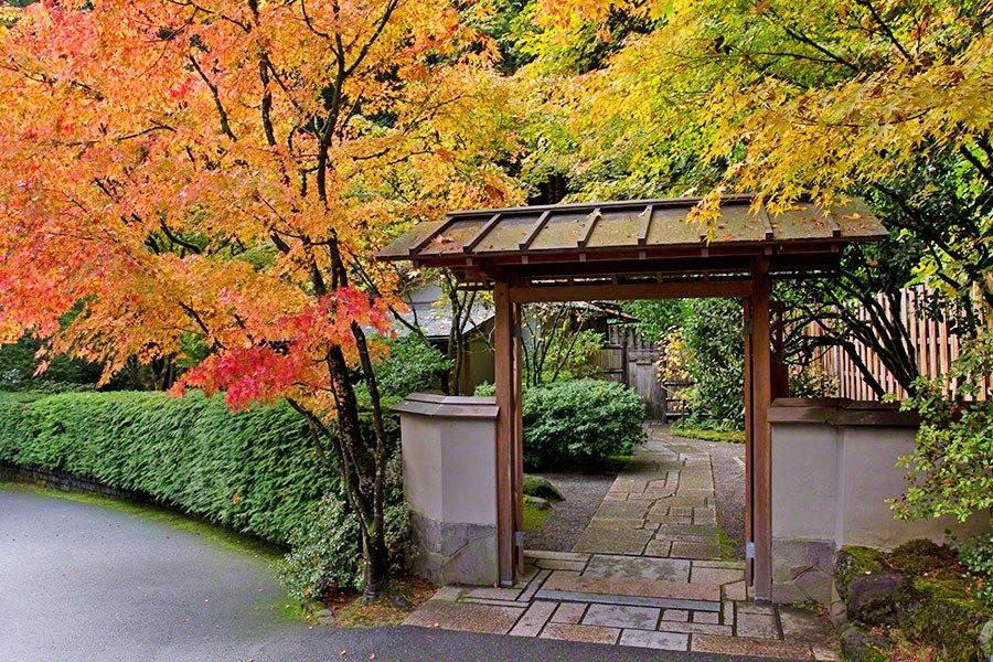 秋天的波特兰日本花园_图1-13