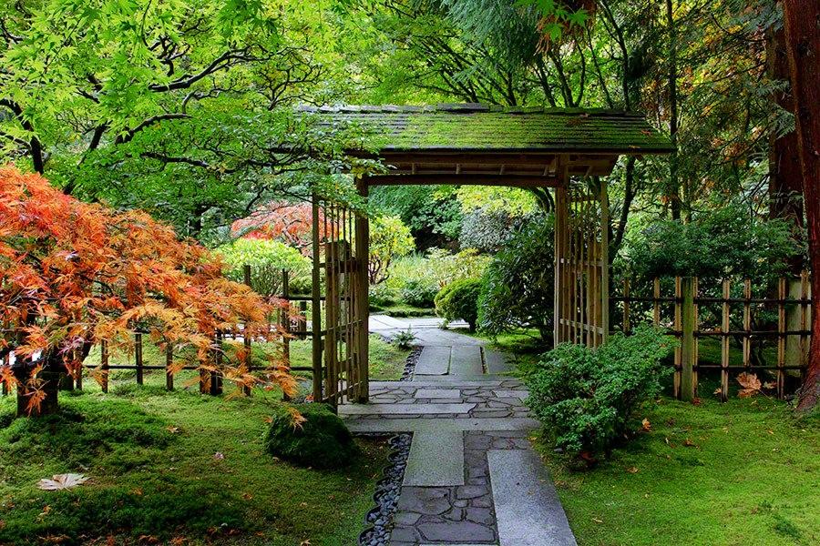秋天的波特兰日本花园_图1-18