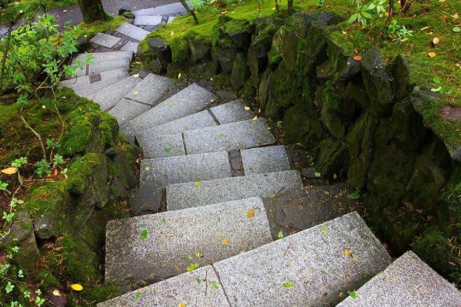 秋天的波特兰日本花园_图1-19