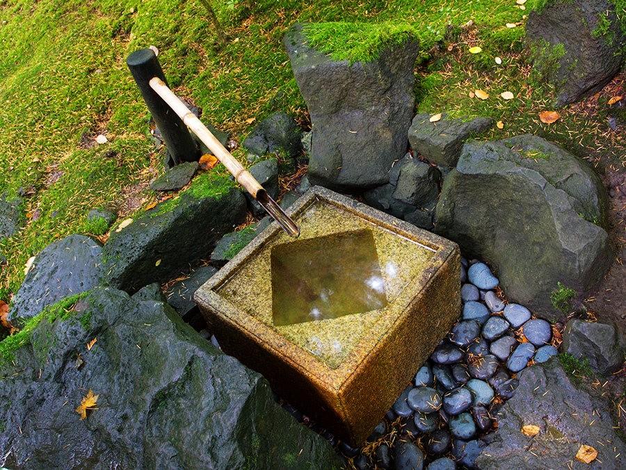 秋天的波特兰日本花园_图1-20