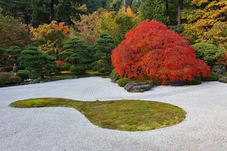 秋天的波特兰日本花园_图1-35