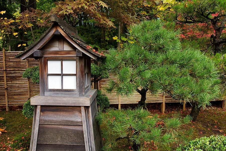 秋天的波特兰日本花园_图1-36