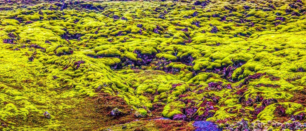 冰岛风采,自然彩图_图1-34