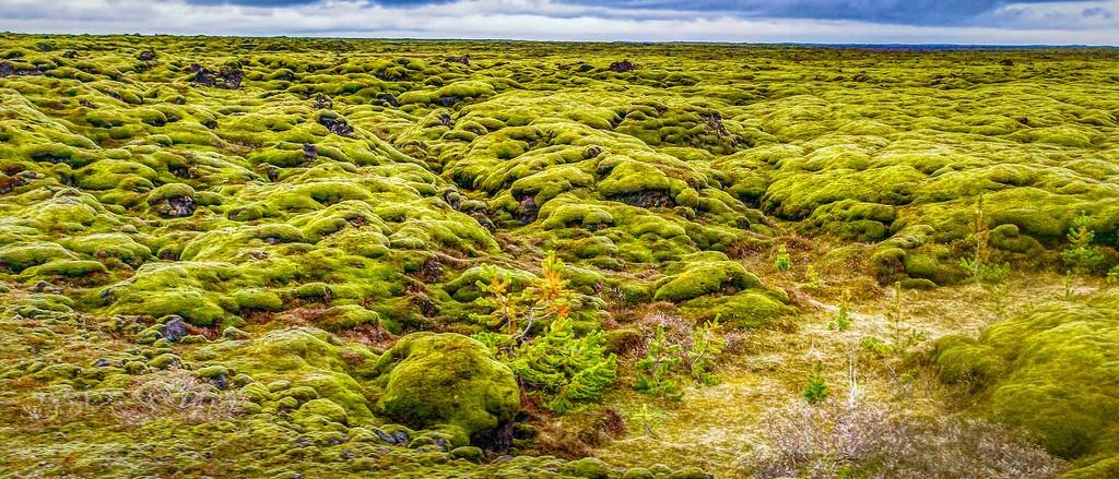 冰岛风采,自然彩图_图1-24