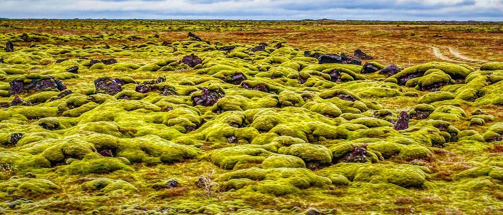 冰岛风采,自然彩图_图1-20