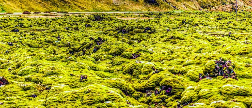 冰岛风采,自然彩图_图1-17
