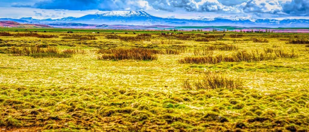 冰岛风采,自然彩图_图1-3
