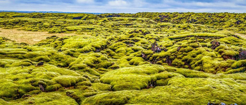 冰岛风采,自然彩图_图1-8