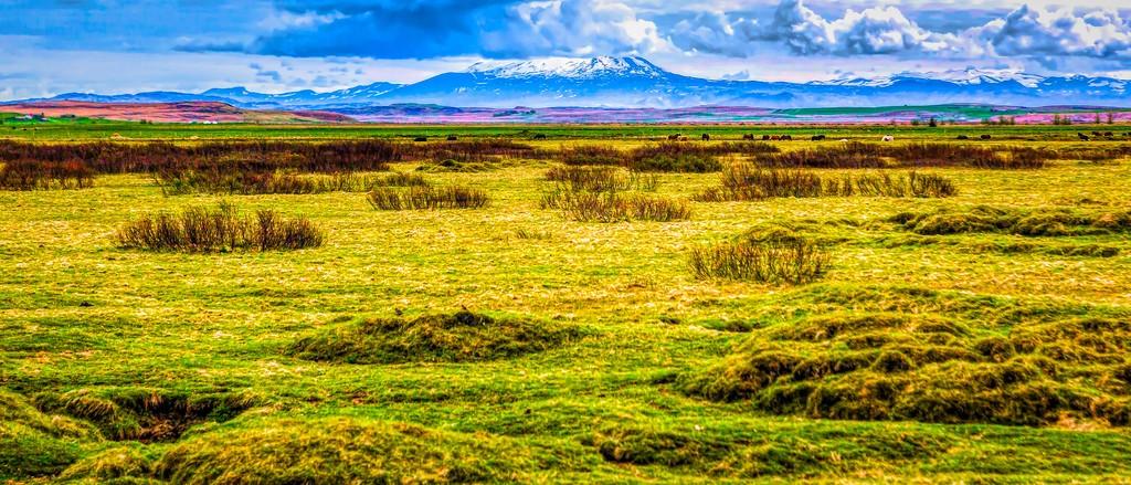 冰岛风采,自然彩图_图1-37