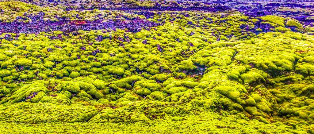 冰岛风采,自然彩图_图1-15
