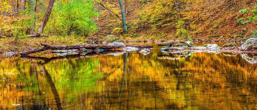 宾州雷德利克里克公园(Ridley creek park),秋景落叶_图1-11