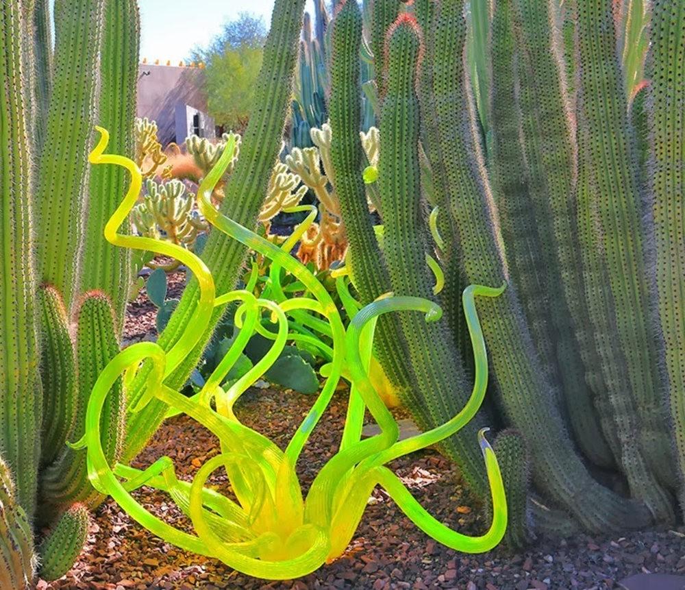沙漠植物园其它部分_图1-1