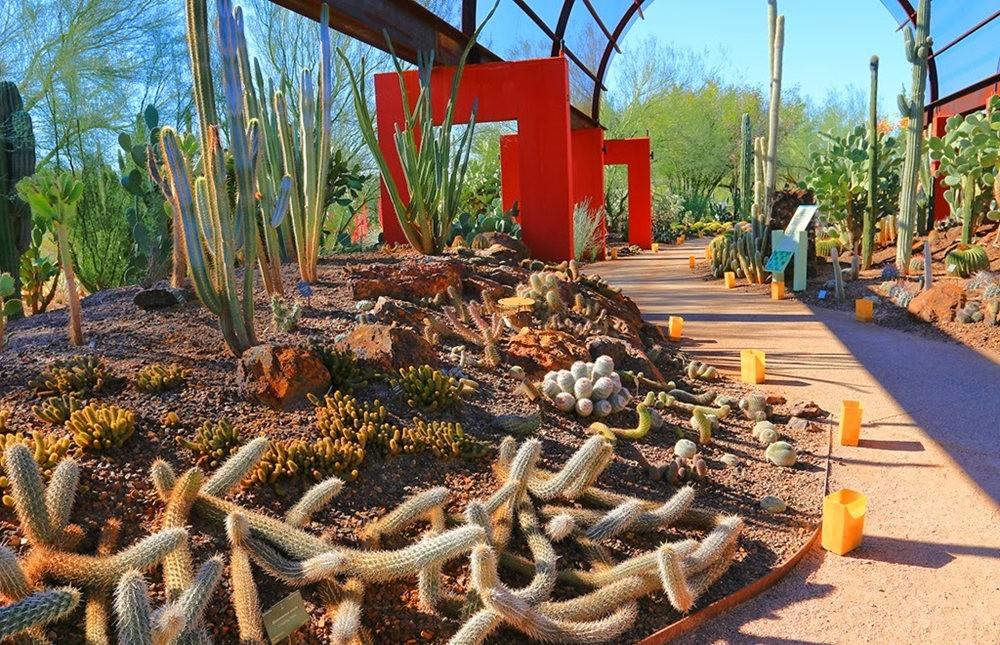 沙漠植物园其它部分_图1-4