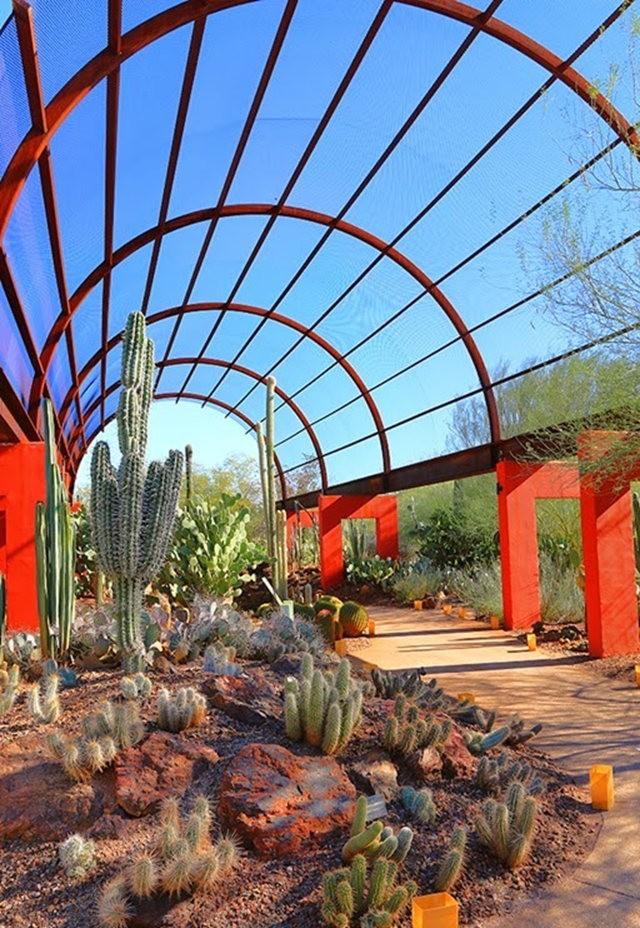 沙漠植物园其它部分_图1-5