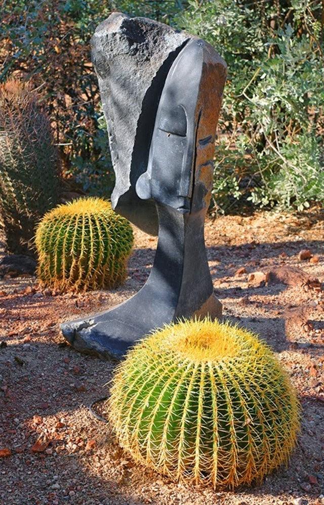 沙漠植物园其它部分_图1-9