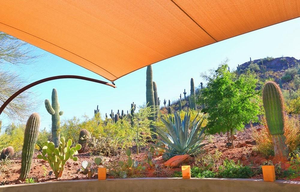 沙漠植物园其它部分_图1-12