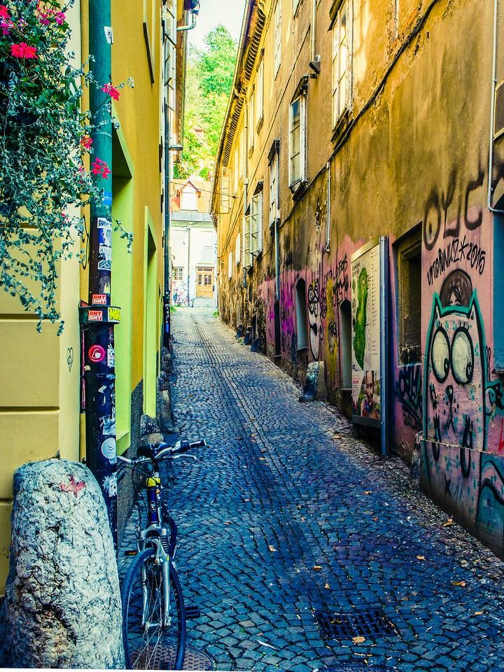 斯洛文尼亚首都卢布尔雅那(Ljubljana), 小巷文化_图1-24