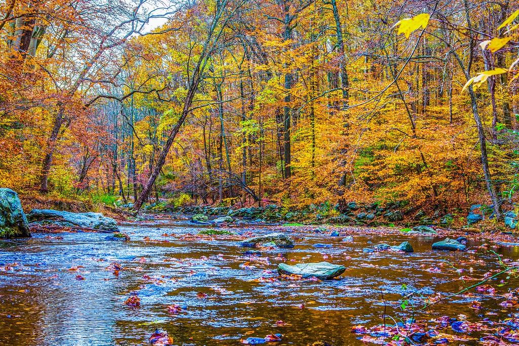 宾州雷德利克里克公园(Ridley creek park),踏秋归来_图1-28