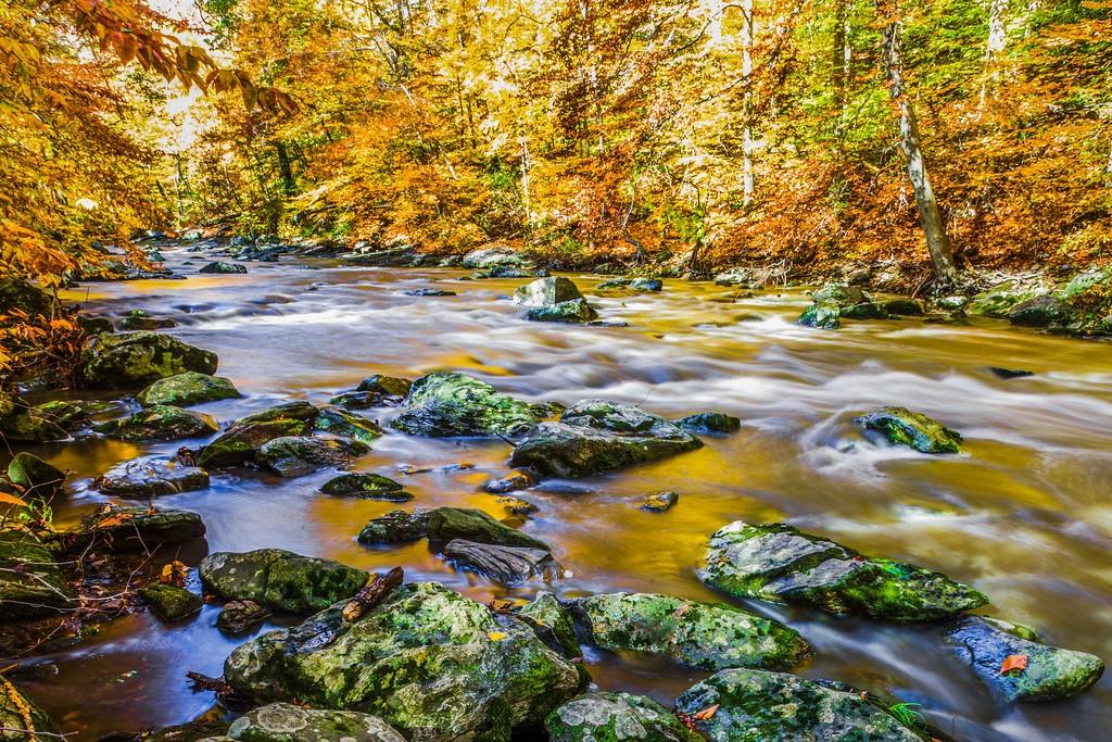 宾州雷德利克里克公园(Ridley creek park),踏秋归来_图1-23