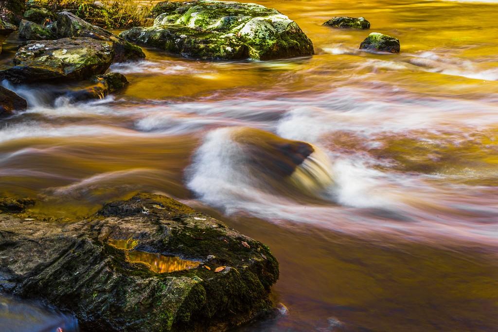 宾州雷德利克里克公园(Ridley creek park),踏秋归来_图1-20