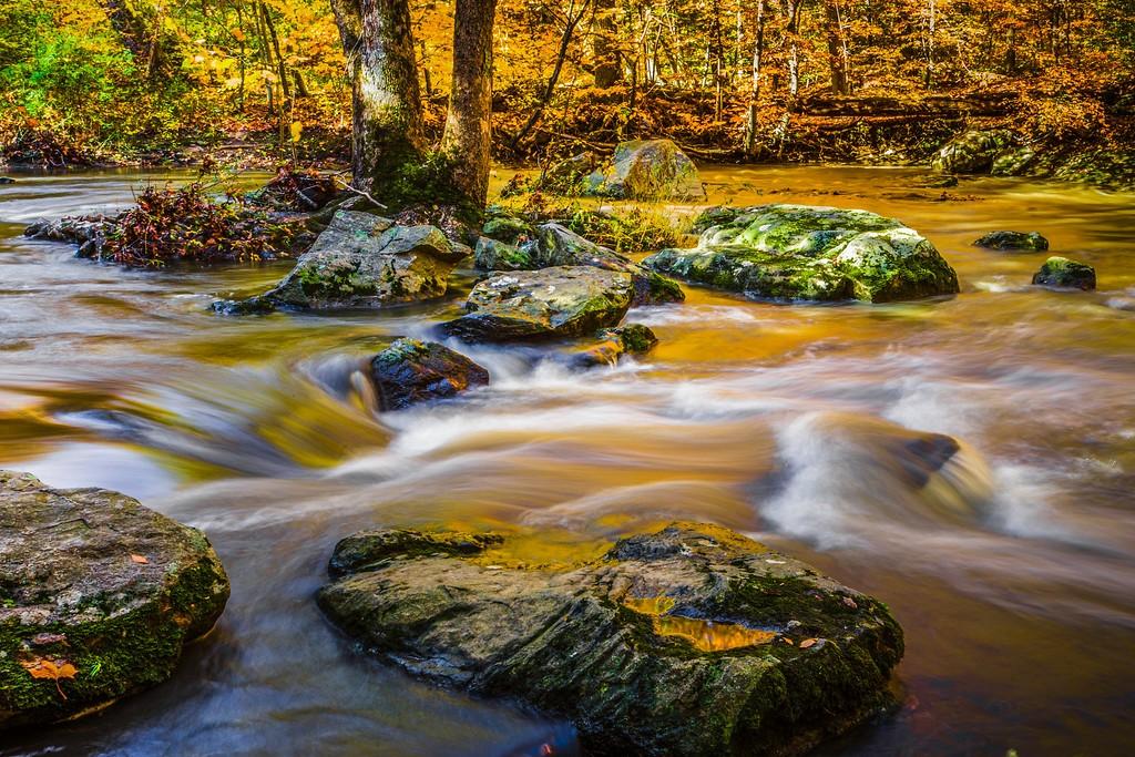 宾州雷德利克里克公园(Ridley creek park),踏秋归来_图1-24