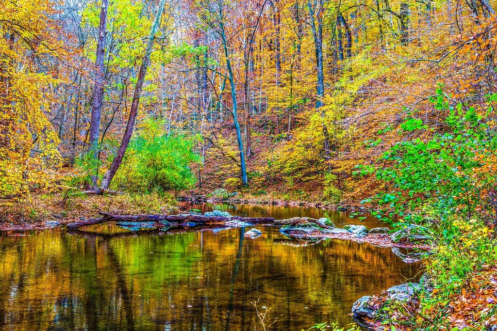 宾州雷德利克里克公园(Ridley creek park),踏秋归来_图1-18