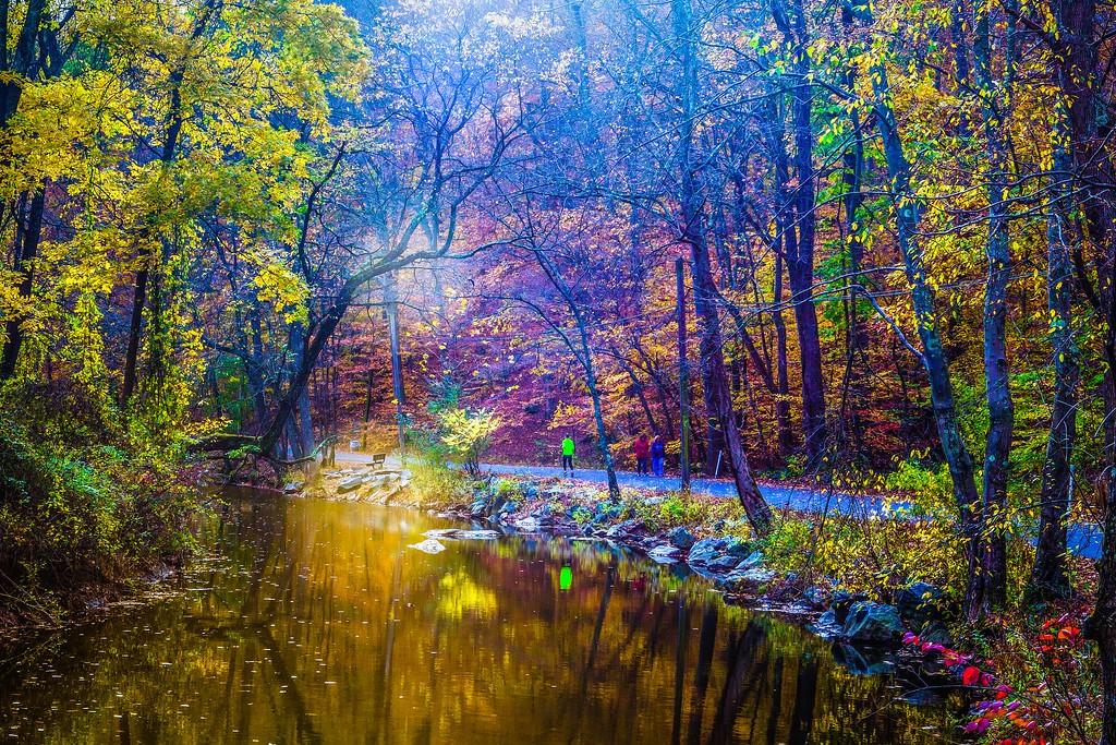 宾州雷德利克里克公园(Ridley creek park),踏秋归来_图1-14
