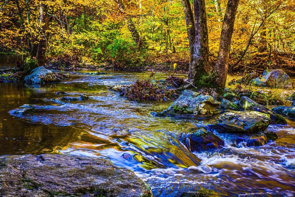 宾州雷德利克里克公园(Ridley creek park),踏秋归来_图1-12