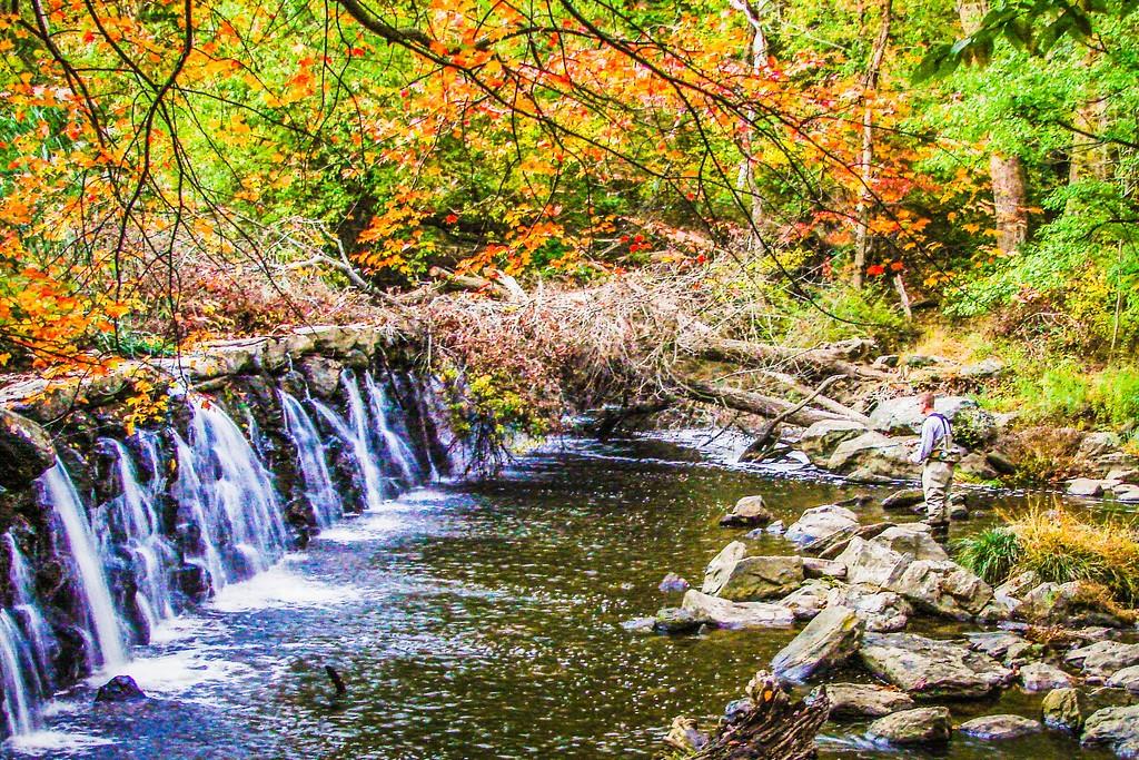 宾州雷德利克里克公园(Ridley creek park),踏秋归来_图1-16