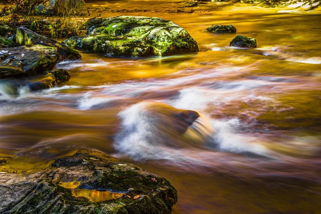 宾州雷德利克里克公园(Ridley creek park),踏秋归来_图1-10