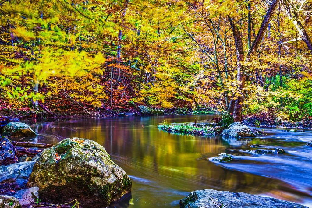 宾州雷德利克里克公园(Ridley creek park),踏秋归来_图1-11
