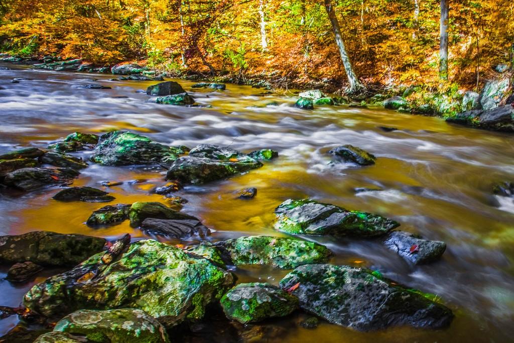 宾州雷德利克里克公园(Ridley creek park),踏秋归来_图1-1