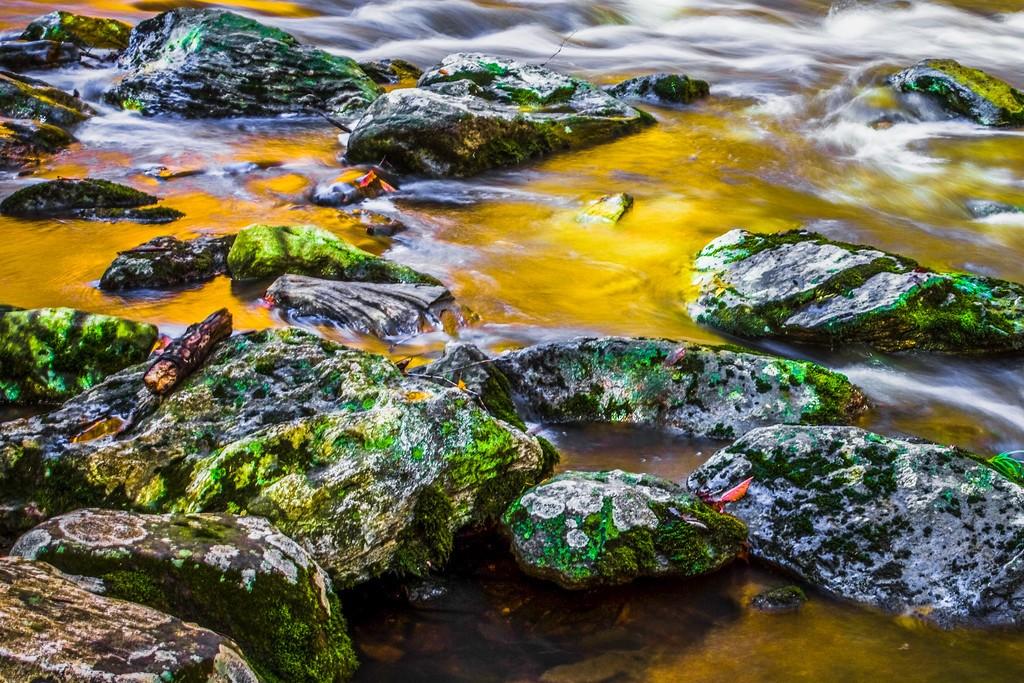 宾州雷德利克里克公园(Ridley creek park),踏秋归来_图1-9