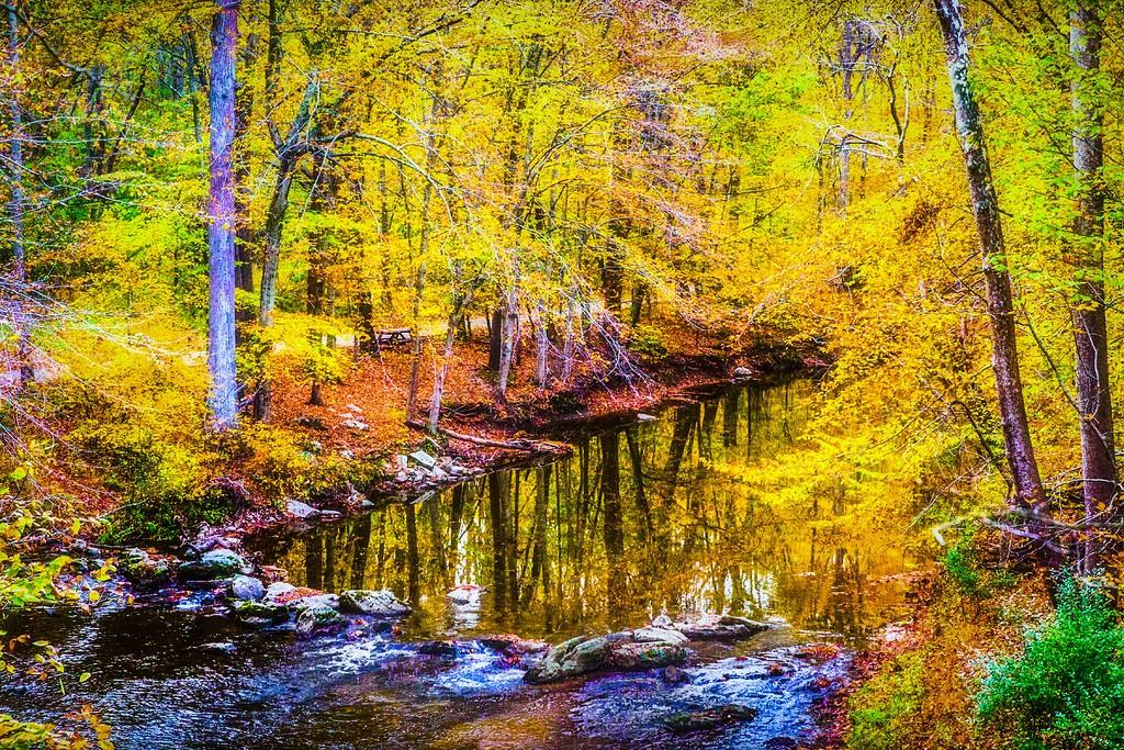 宾州雷德利克里克公园(Ridley creek park),踏秋归来_图1-2