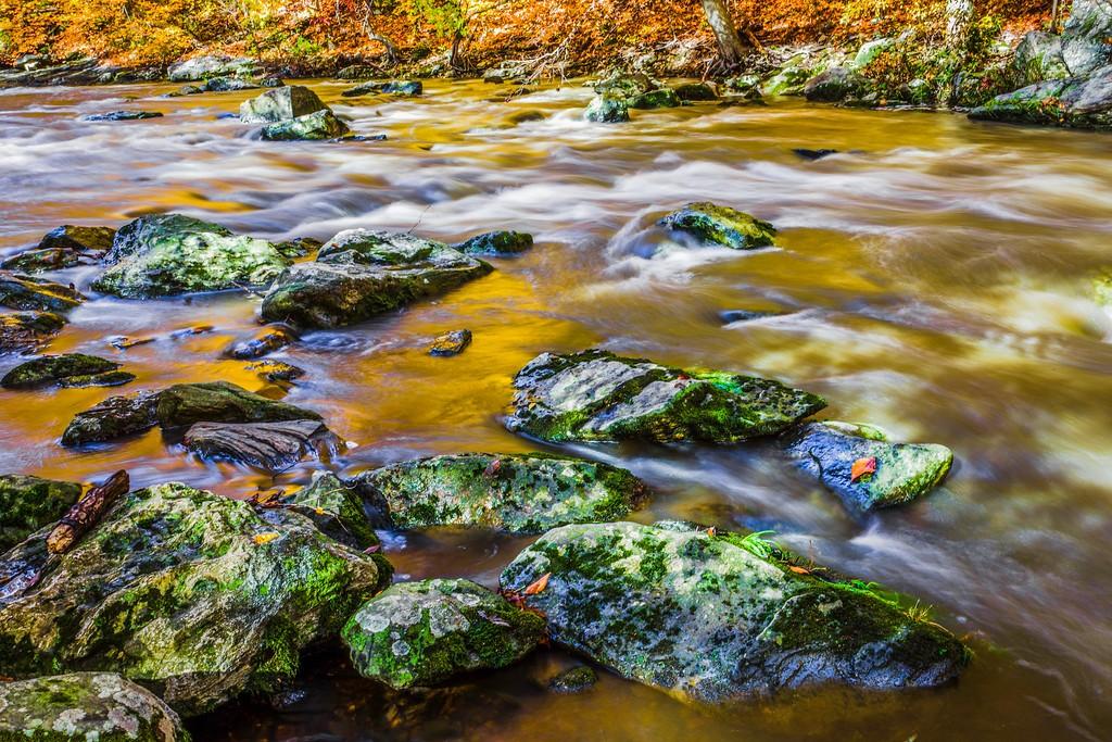 宾州雷德利克里克公园(Ridley creek park),踏秋归来_图1-6