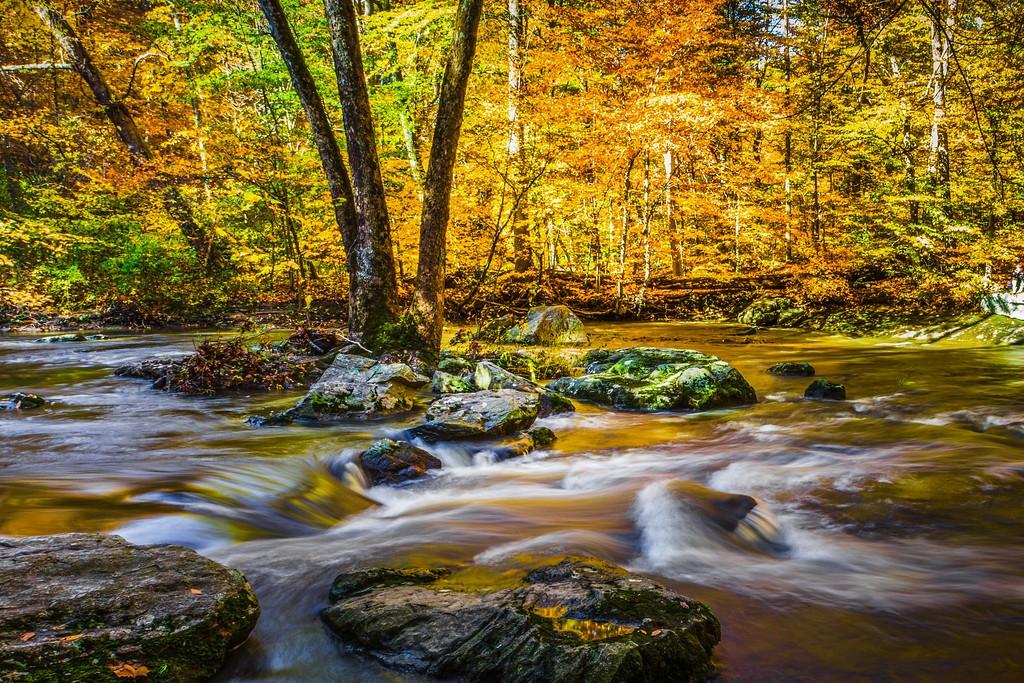 宾州雷德利克里克公园(Ridley creek park),踏秋归来_图1-5