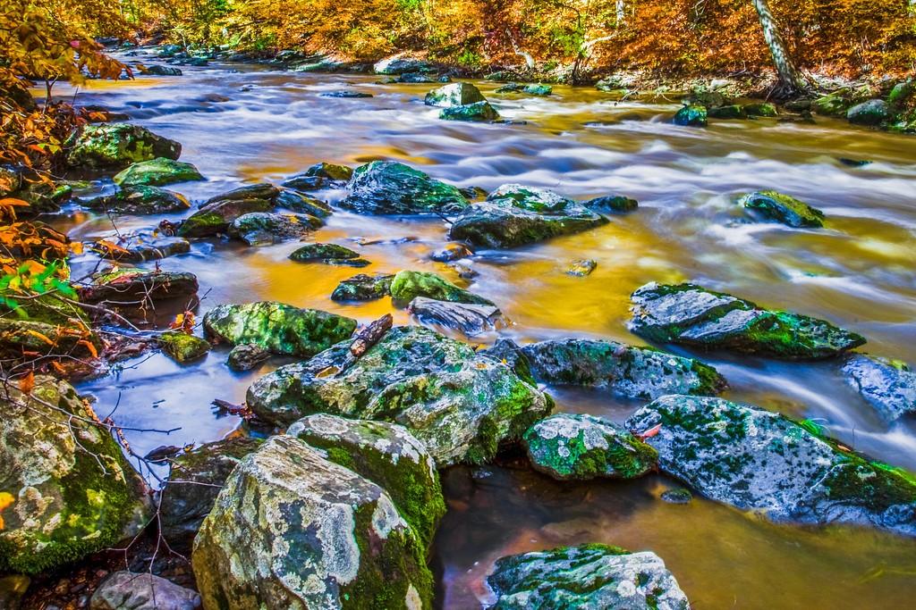 宾州雷德利克里克公园(Ridley creek park),踏秋归来_图1-3