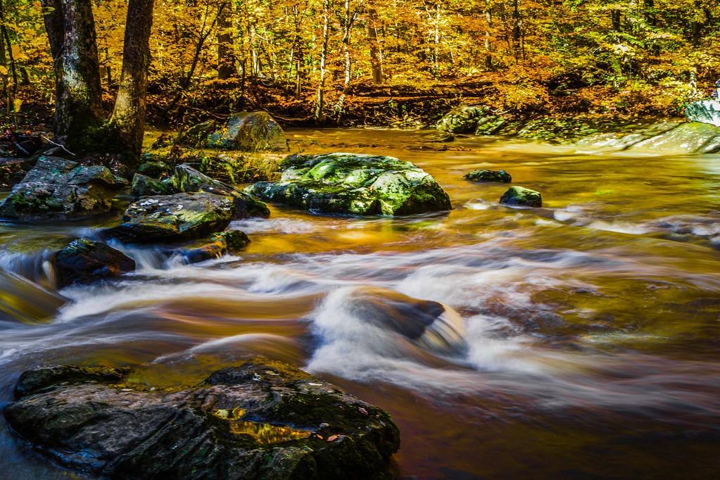 宾州雷德利克里克公园(Ridley creek park),踏秋归来_图1-7