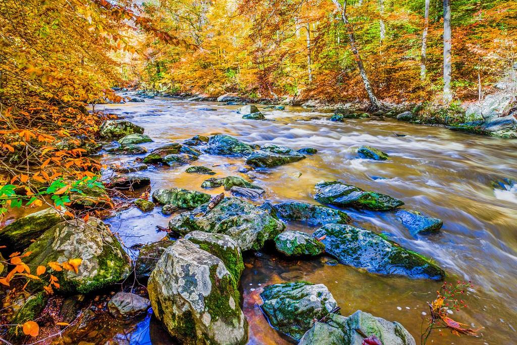 宾州雷德利克里克公园(Ridley creek park),踏秋归来_图1-30