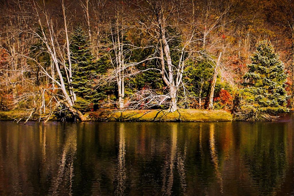 宾州 French Creek State Park,晚秋即景_图1-19