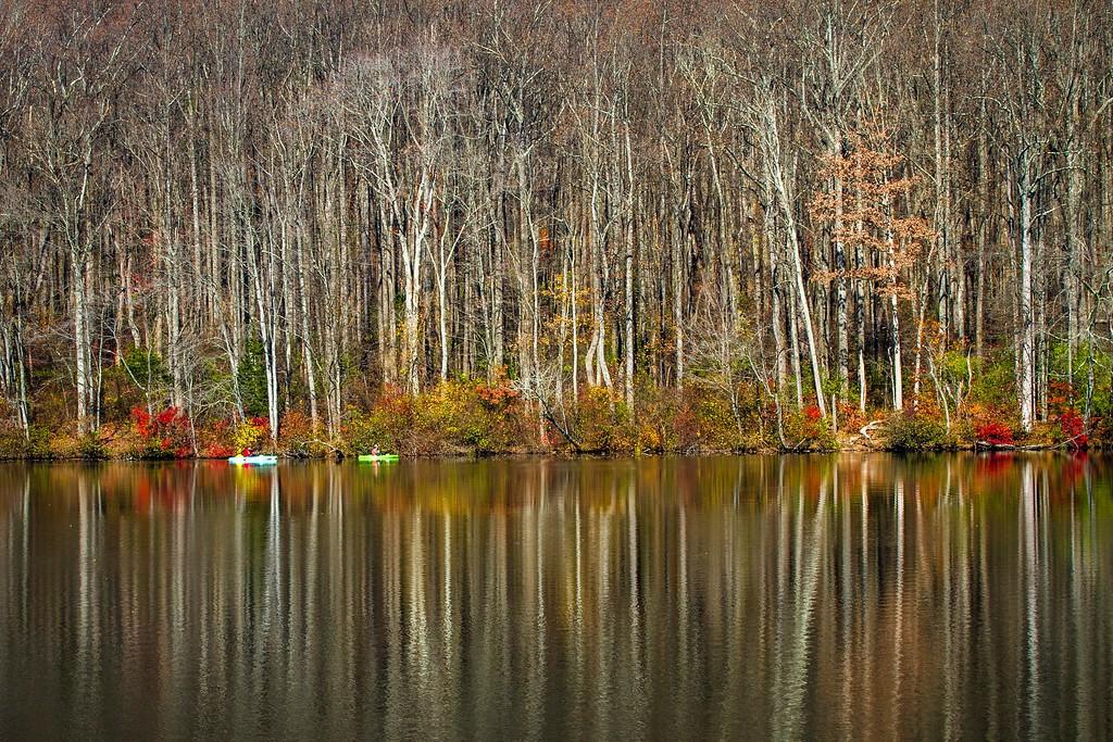 宾州 French Creek State Park,晚秋即景_图1-11