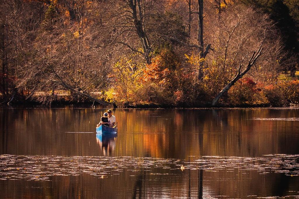 宾州 French Creek State Park,晚秋即景_图1-1