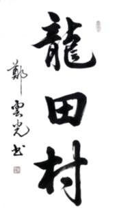"""纽约闽籍书法家為""""乡村题寫书法""""活动_图1-53"""
